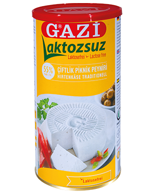 GAZI LACTOSEVRIJ KAAS 55%  6X800 GR